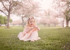 Adelyn cherry blossoms 2